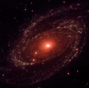 Black Hole in M81