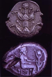 Cyrene coins depicting silphium